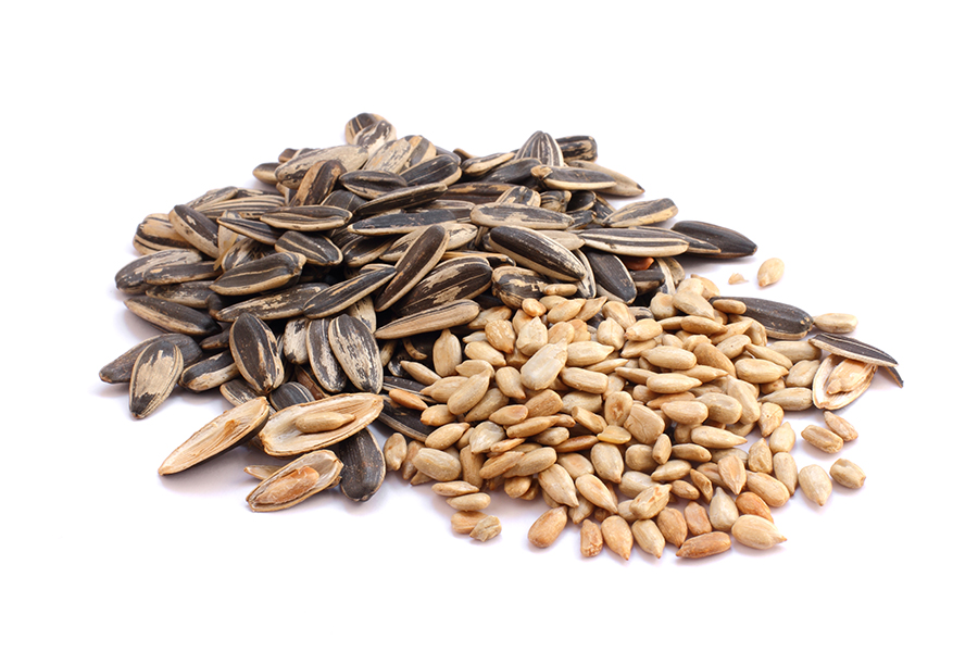 dry roasted sunflower seeds